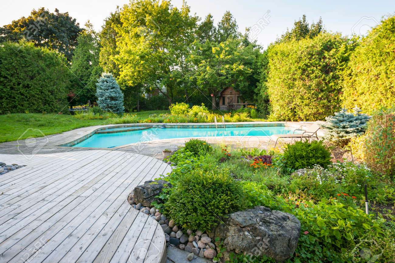 Backyard rock garden with outdoor inground residential swimming pool, curved wooden deck and stone patio Stock Photo - 33879226
