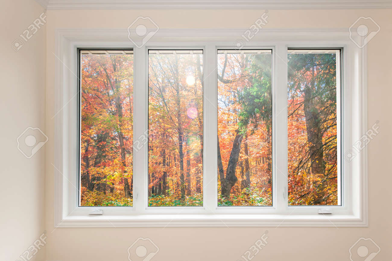 Large four pane window looking on colorful fall forest Stock Photo - 33879229