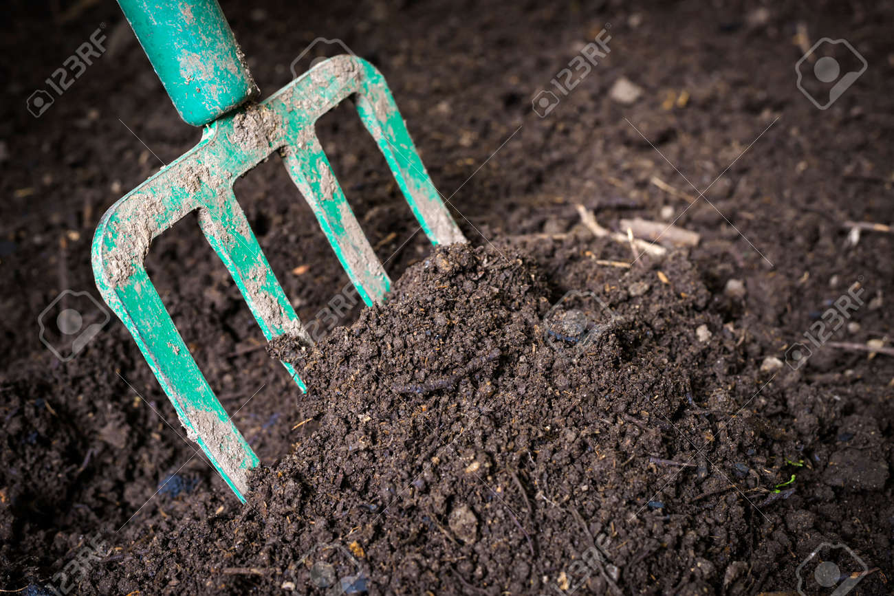 Garden fork turning black composted soil in compost bin ready for gardening, close up. - 35893238