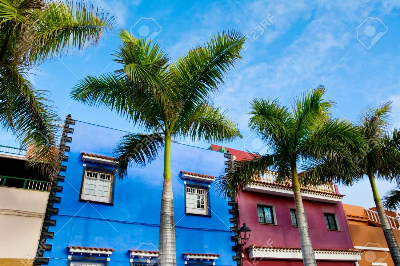 Erstaunliche Ansicht über Bunte Häuser Und Palmen Auf Straße. Ort ...