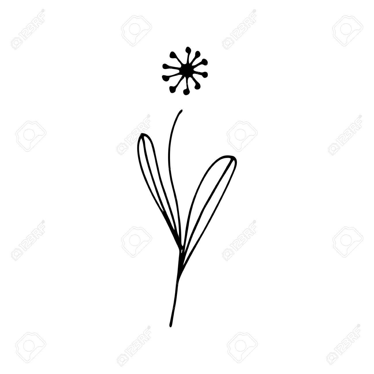 Colorful Black And White Pattern For Coloring Daisy Flower Illustration Royalty Free Cliparts Vectors And Stock Illustration Image 143584159