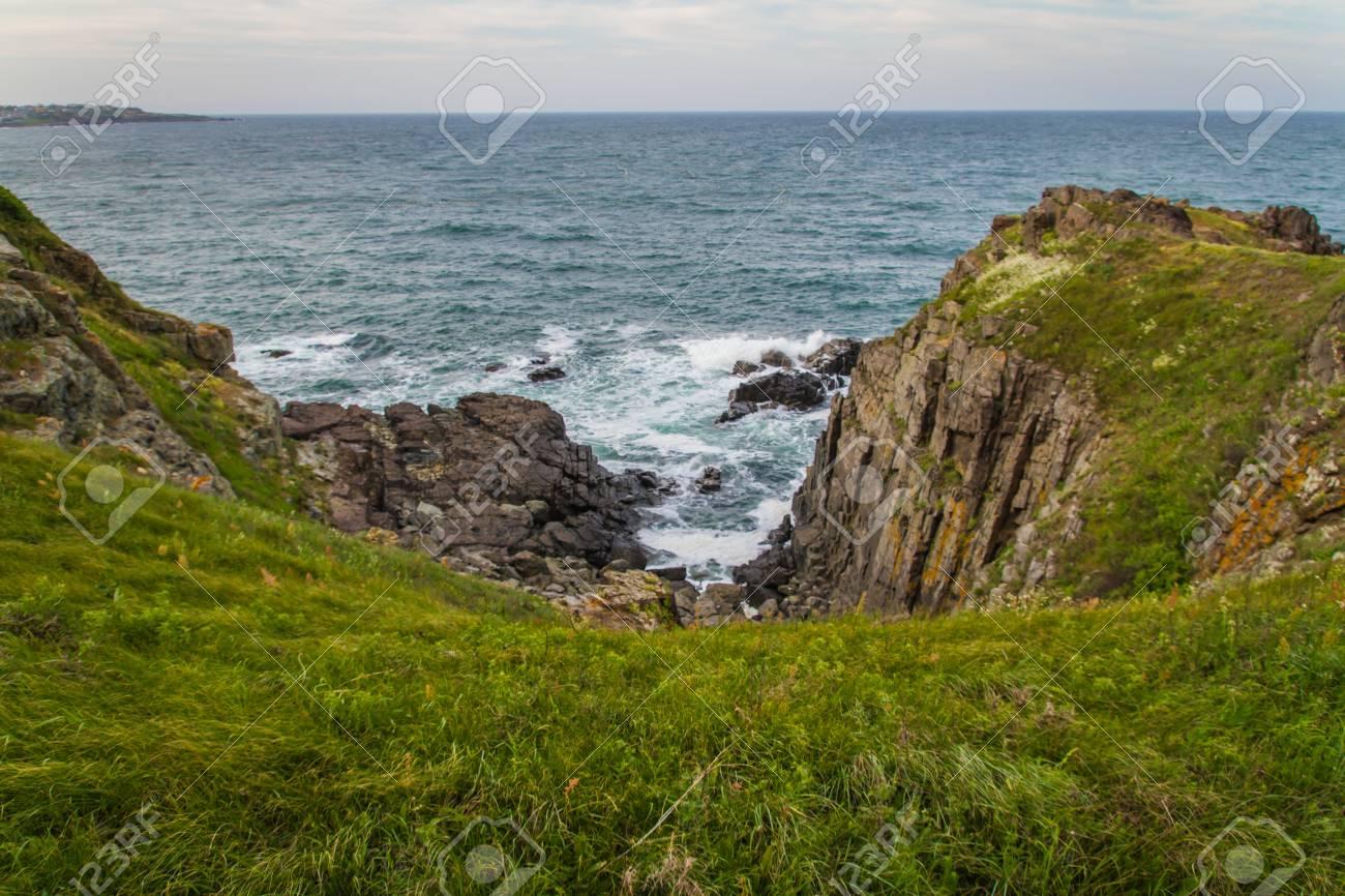 ocean, meadows and cliffs. Horizontal shot - 21049659