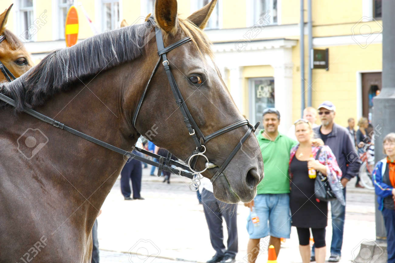 HELSINKI, FINLAND - JUNE 30: Mounted police protect people taking part in the annual Helsinki Pride gay parade in Helsinki, Finland on June 30, 2012.  Stock Photo - 17436322
