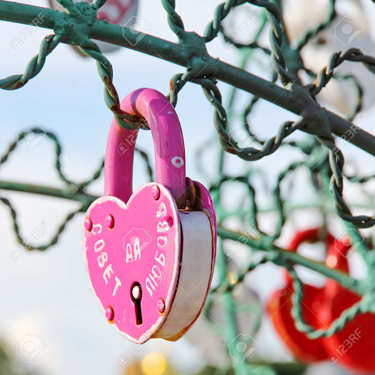 Tree of Love, Luzhkov Bridge  Moscow, Russia  Padlocks in the shape of a heart - a symbol of eternal love and union  Stock Photo - 21838087