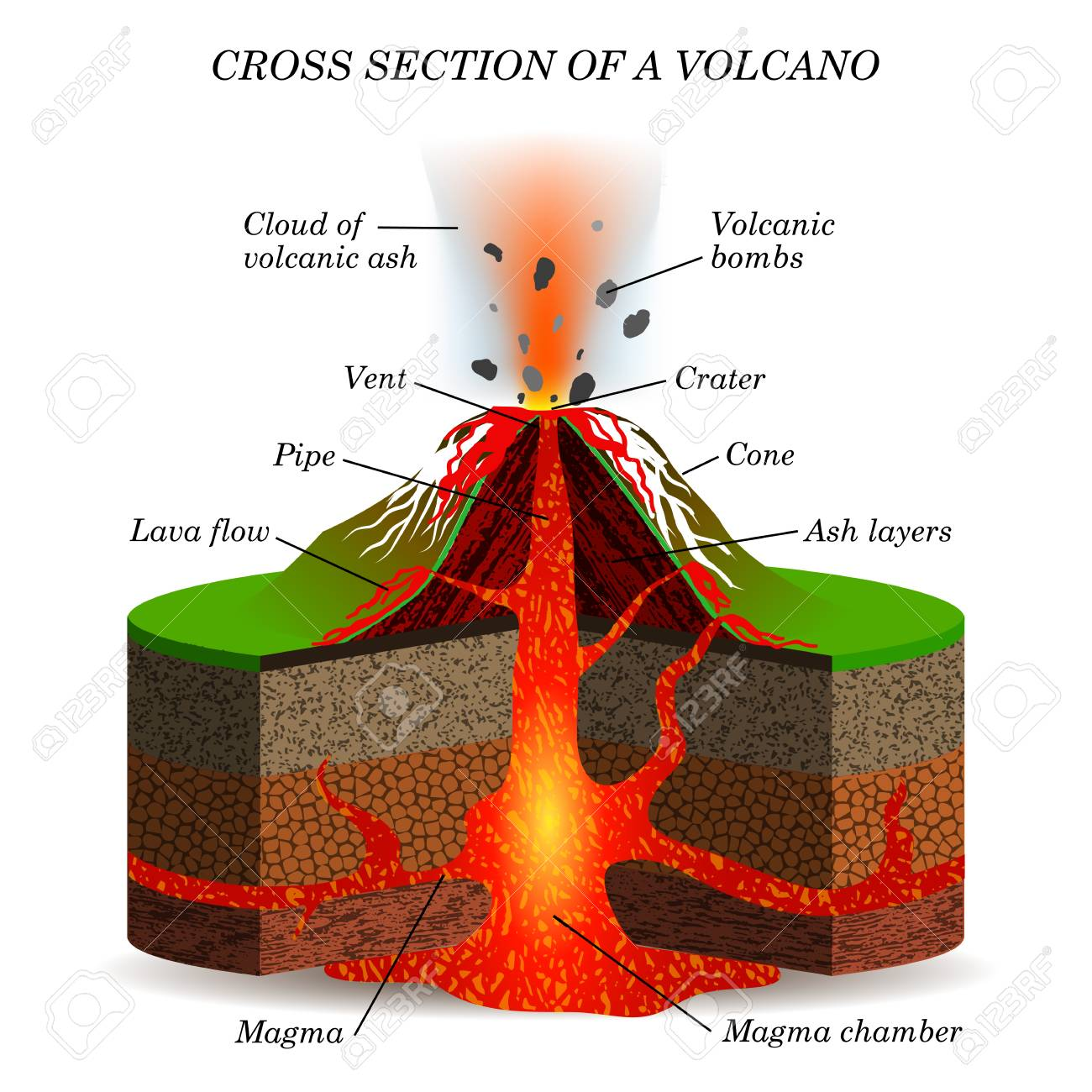 Volcano igneous eruption in the cross section. Education scientific scheme for posters, placards, pages, banners, vector illustration. - 95893300