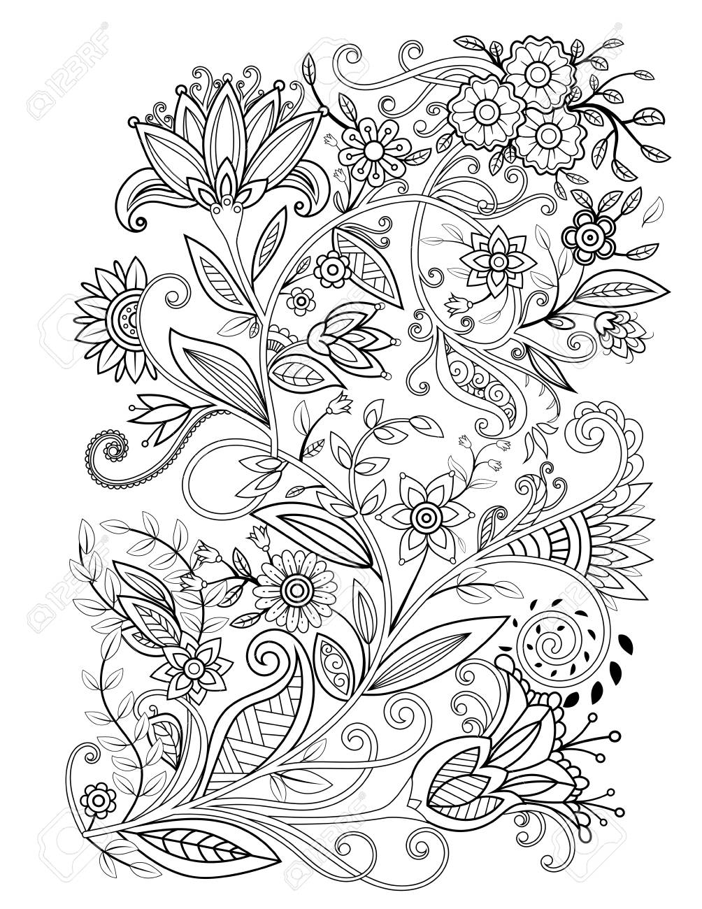 Floral adult coloring page. Black and white doodle flowers. Bouquet line art vector illustration isolated on white background. Design elements - 116070213