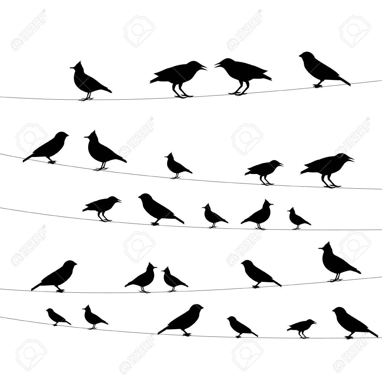 Vögel Auf Einem Draht-Symbol, Vektor-Illustration Lizenzfrei ...