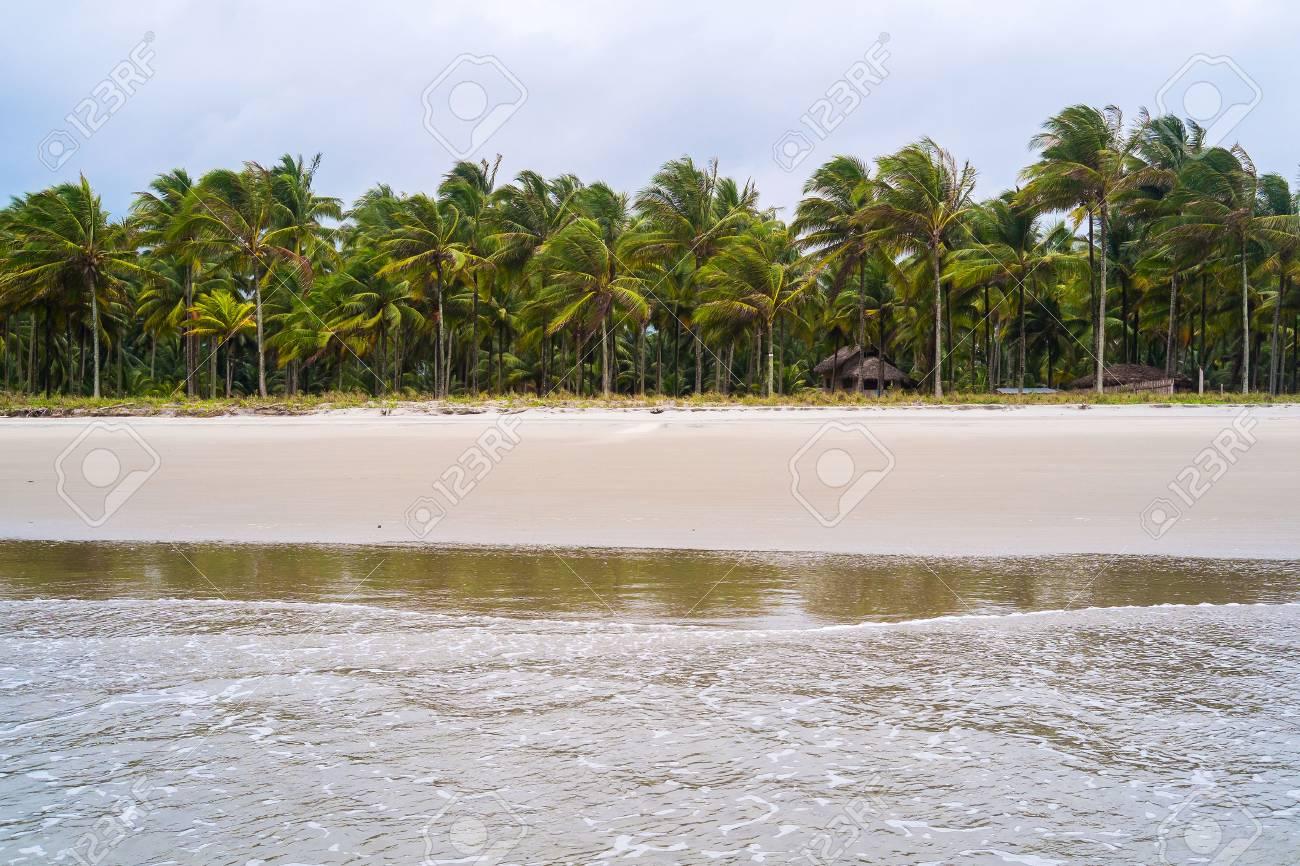 Beach of Portete near Mompiche, Ecuador