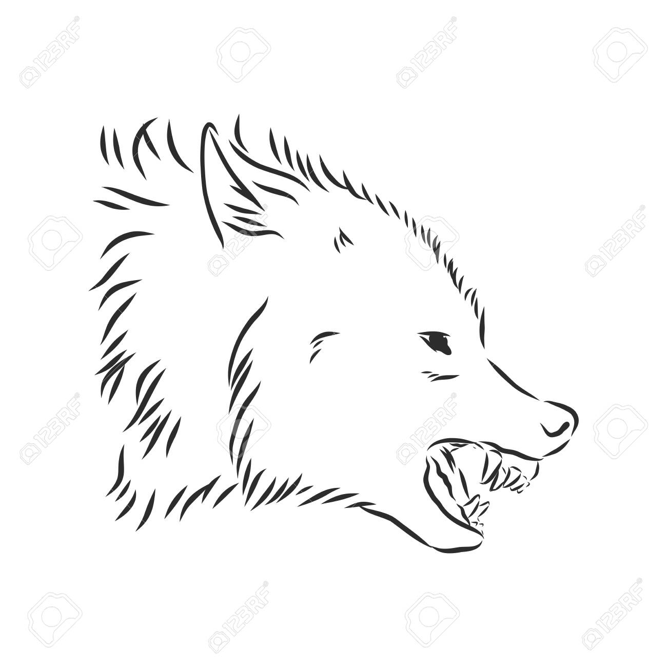 Angry Snarling Wolf Profile Head Ferocious Animal Profile Black Royalty Free Cliparts Vectors And Stock Illustration Image 146036693