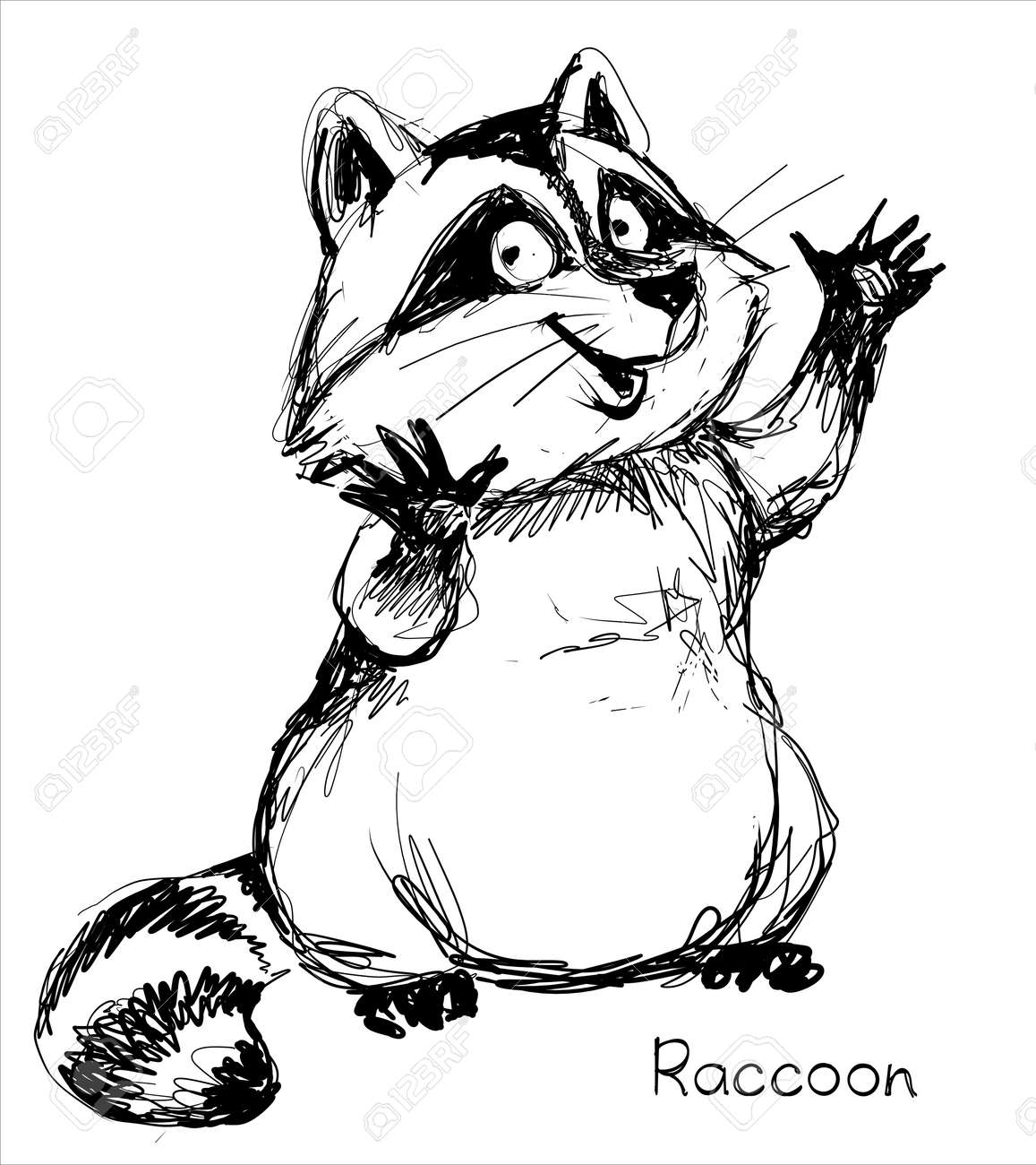 Vector. A graphic black and white sketch of a funny raccoon. - 168498586