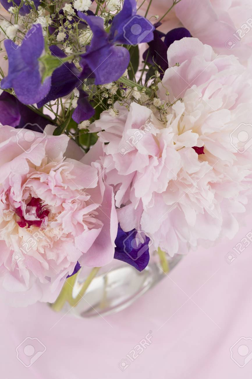 pink flowers stock photo picture and royalty free image image