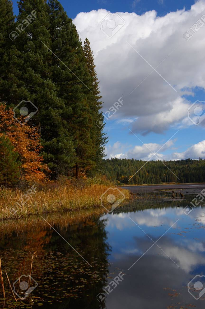 Mountain lake with colorful oak leaves and autumn grasses. Stock Photo - 1930805