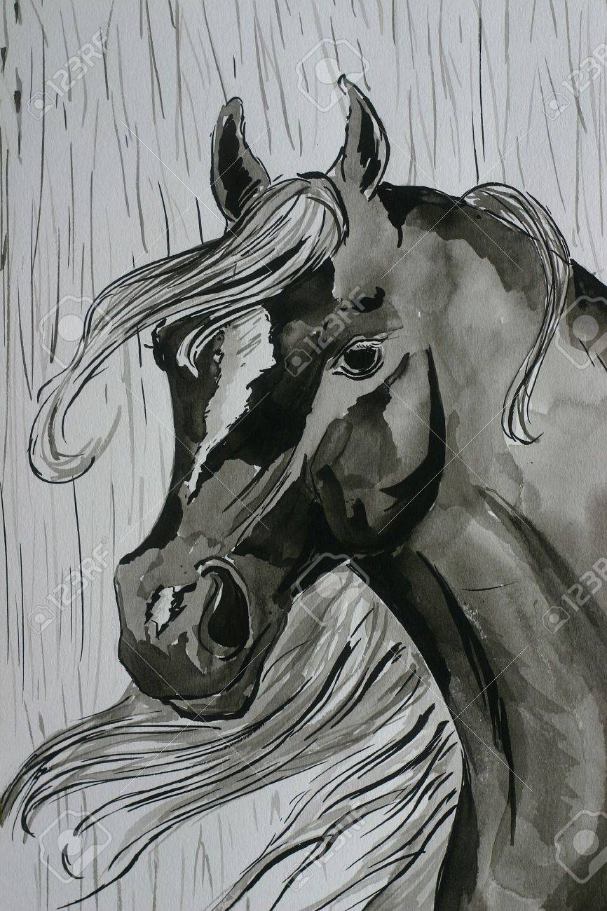 A Watercolor Painting Of A Black Arabian Horse In The Rain Stock Photo Picture And Royalty Free Image Image 522140