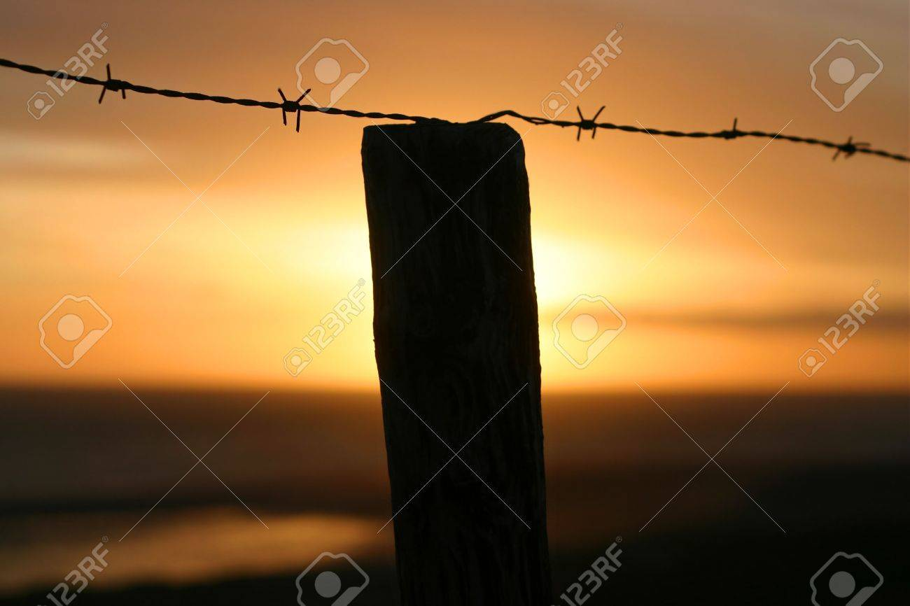 A barb wire fence at sunrise Stock Photo - 710486