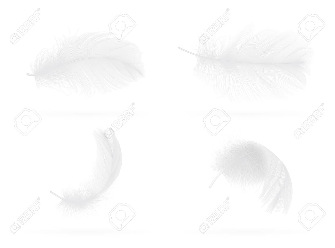 set of falling white bird feather on white background vector - 137321909