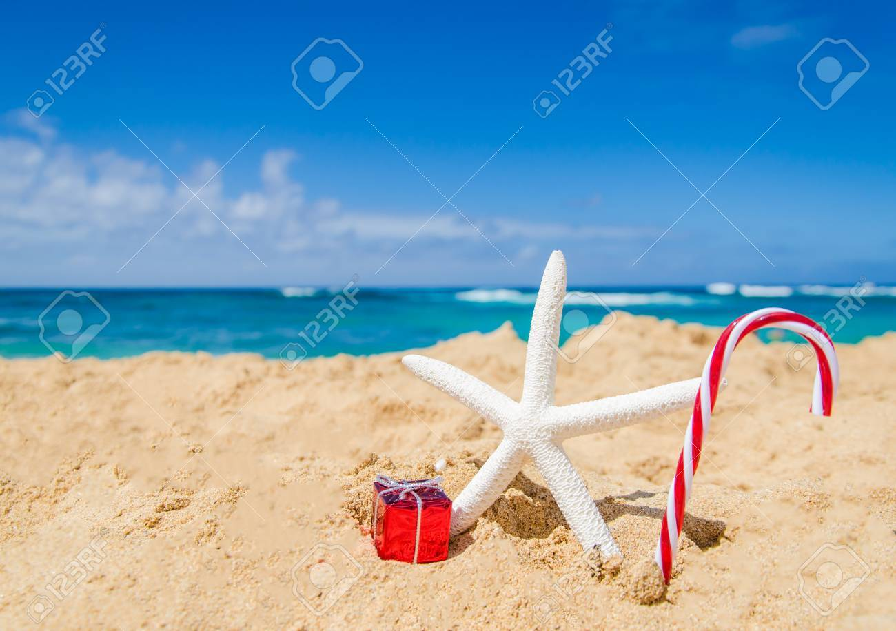 Merry Christmas And Happy New Year Background With Starfish,.. Stock ...