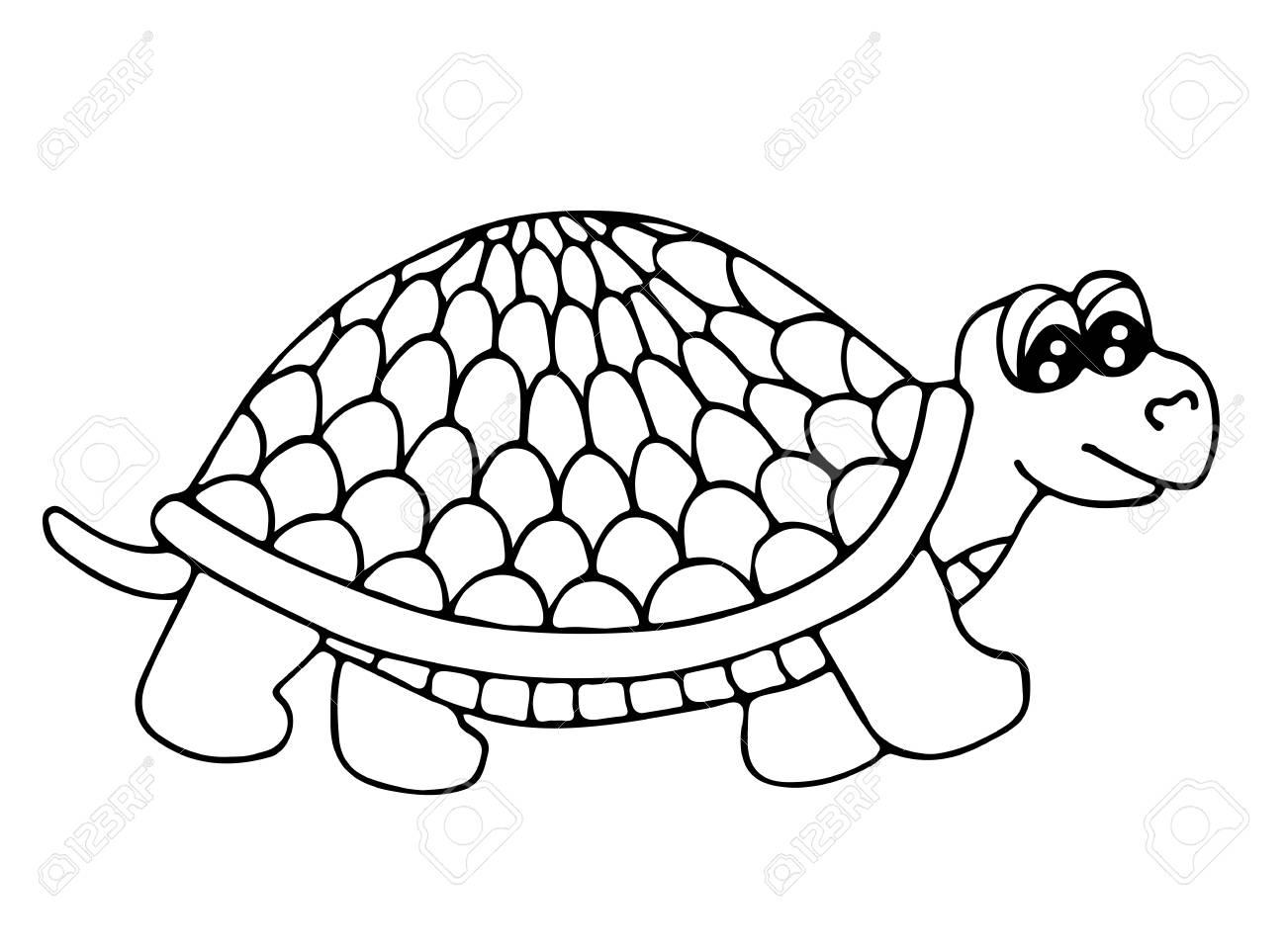 Nette Schildkröte Auf Dem Weißen Hintergrund Isoliert. Schildkröte ...