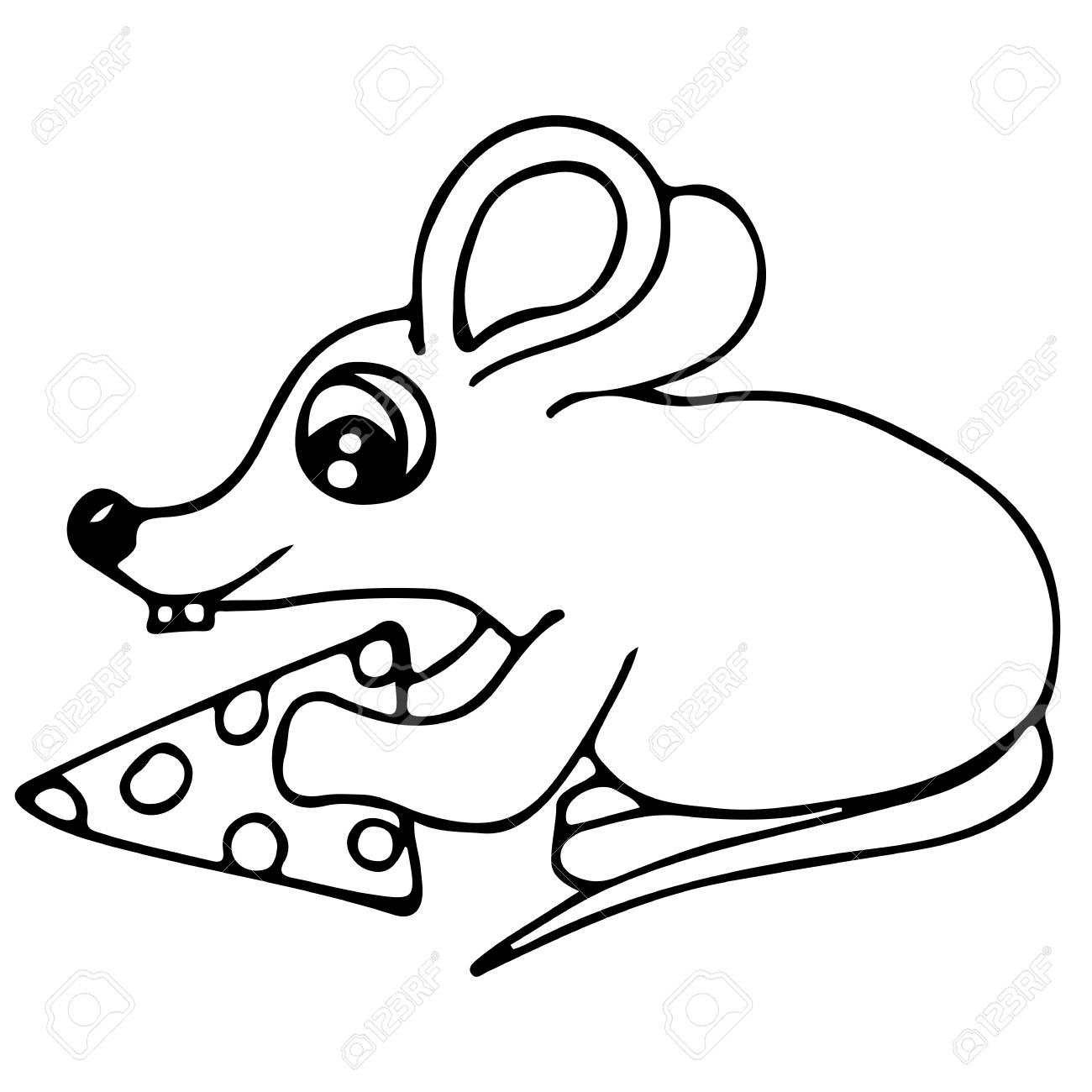 Ratón Lindo Con Pedazo De Queso Aislado En El Fondo Blanco. Para ...
