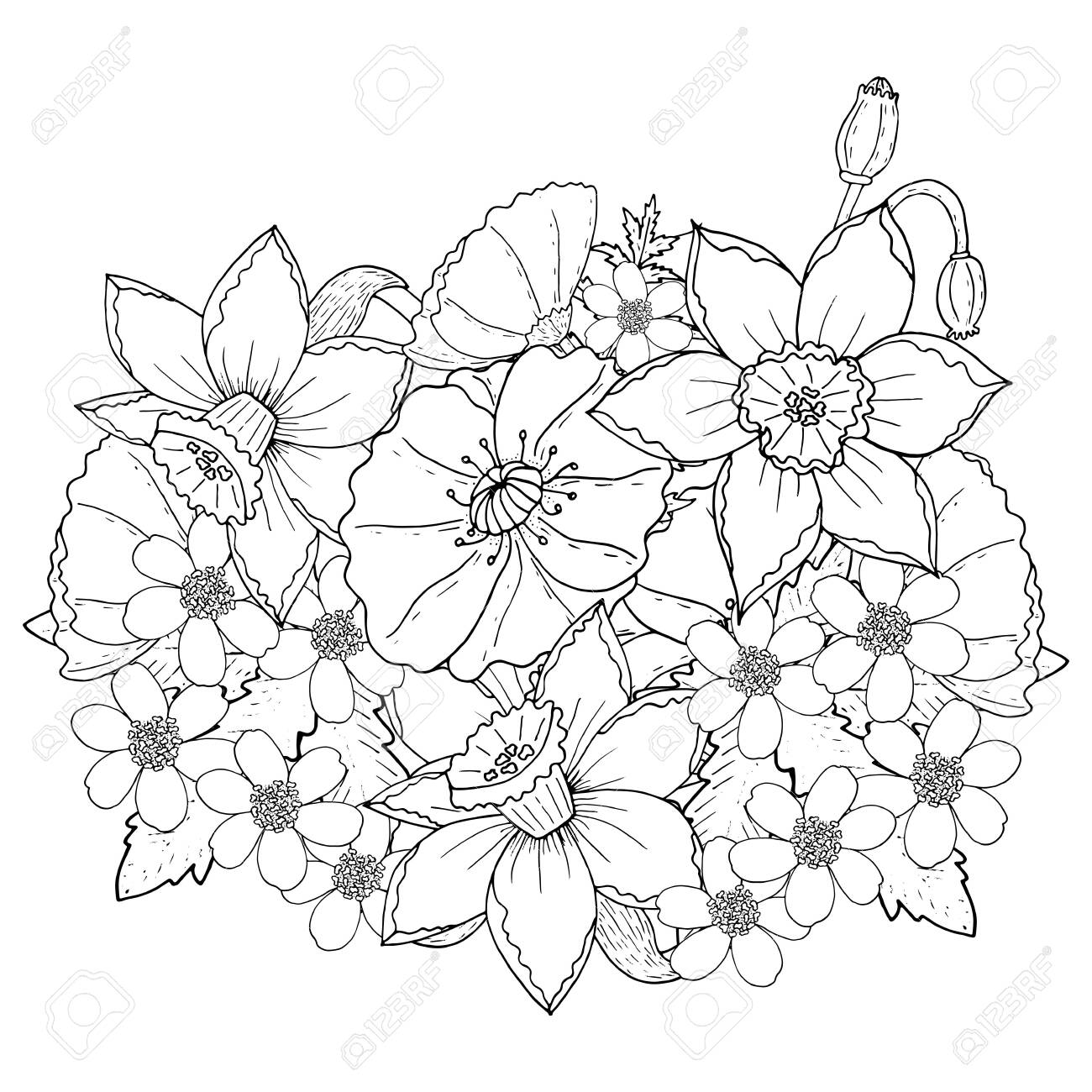 graphic about Poppy Printable named Floral template with Poppy and narcissus. Printable coloring..