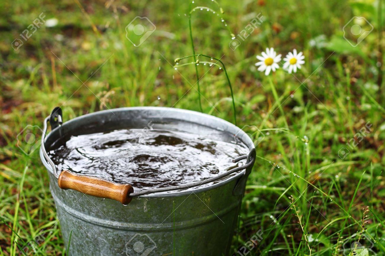 Bucket with rain water outdoors - 21616388