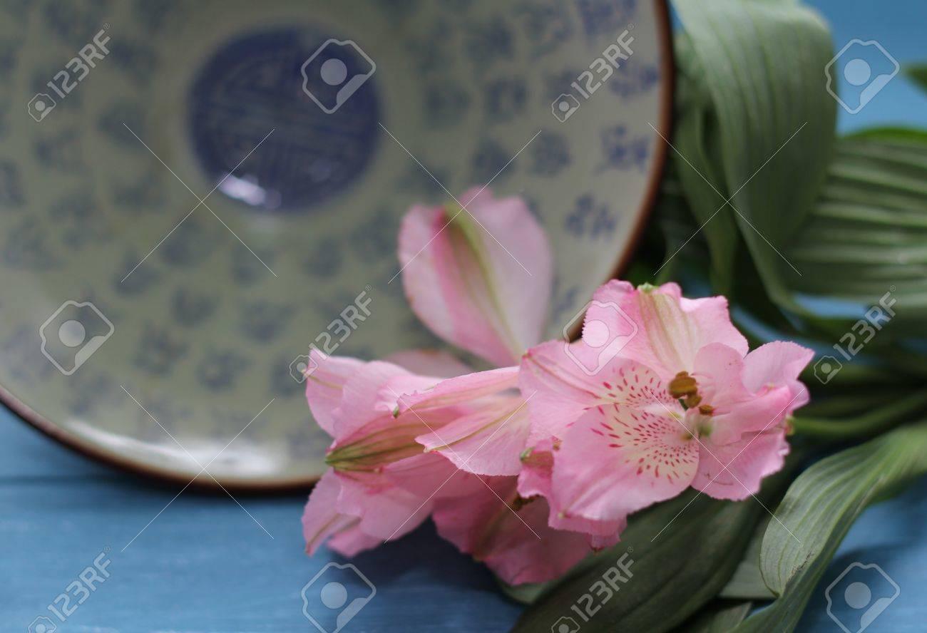 Pale pink alstroemeria flower with blue patterned oriental design pale pink alstroemeria flower with blue patterned oriental design bowl on blue wooden boards shallow izmirmasajfo