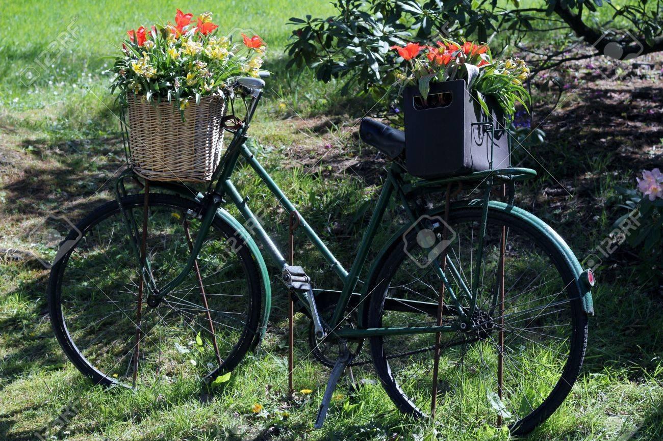 Vélo noir OLd utilisé comme un stand de plantes inhabituelle, une  décoration de jardin vintage