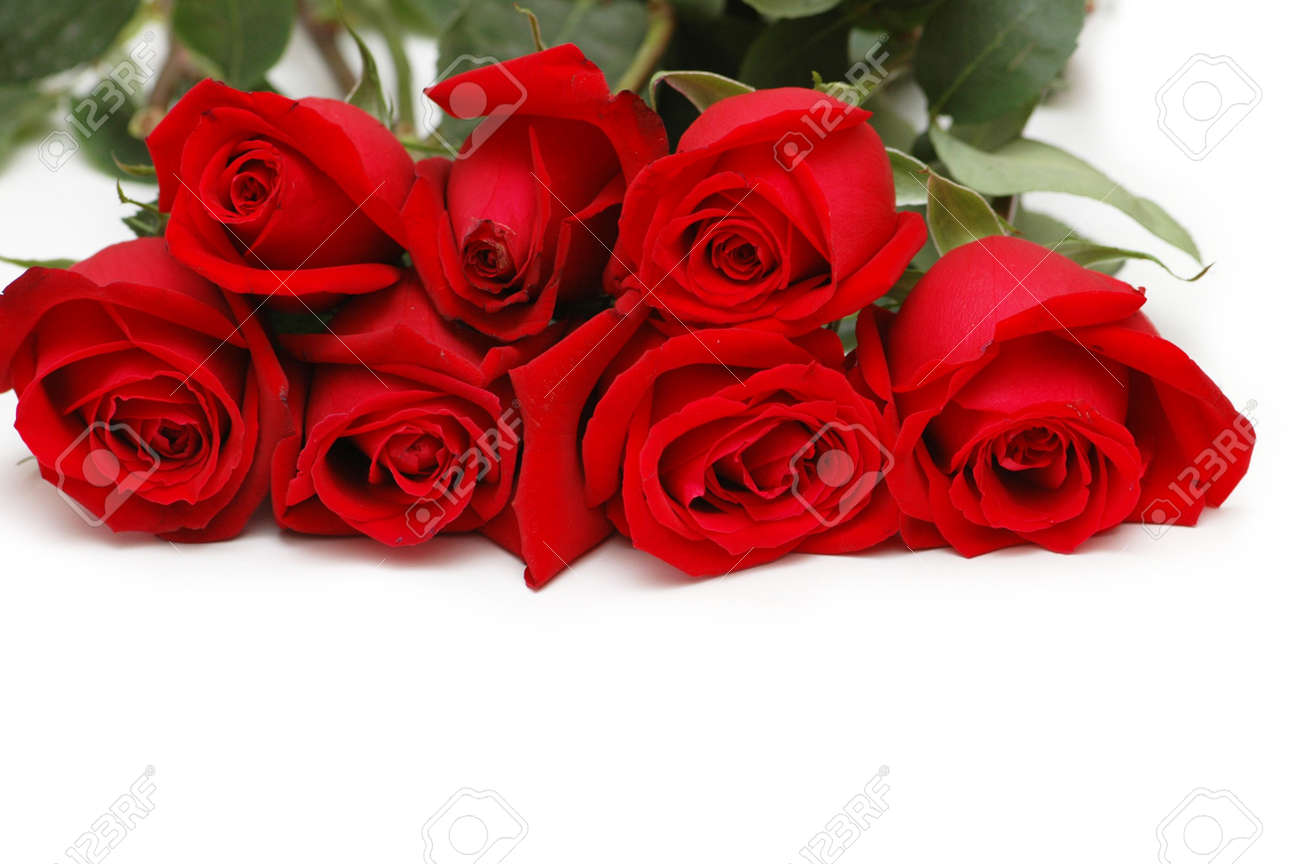Bunch of red roses isolated  on white Stock Photo - 969111