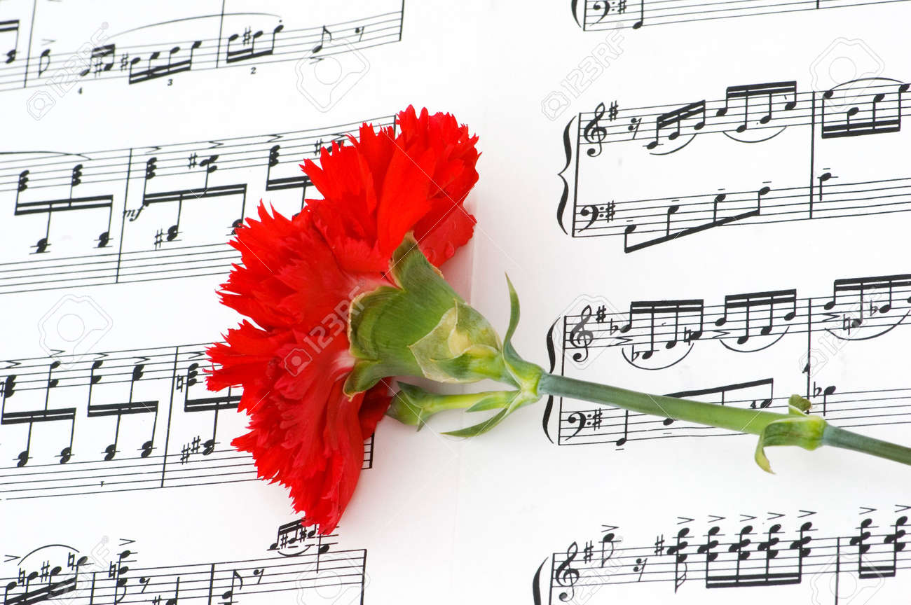 Romatic concept - red carnations flower on musical notes page Stock Photo - 3793339
