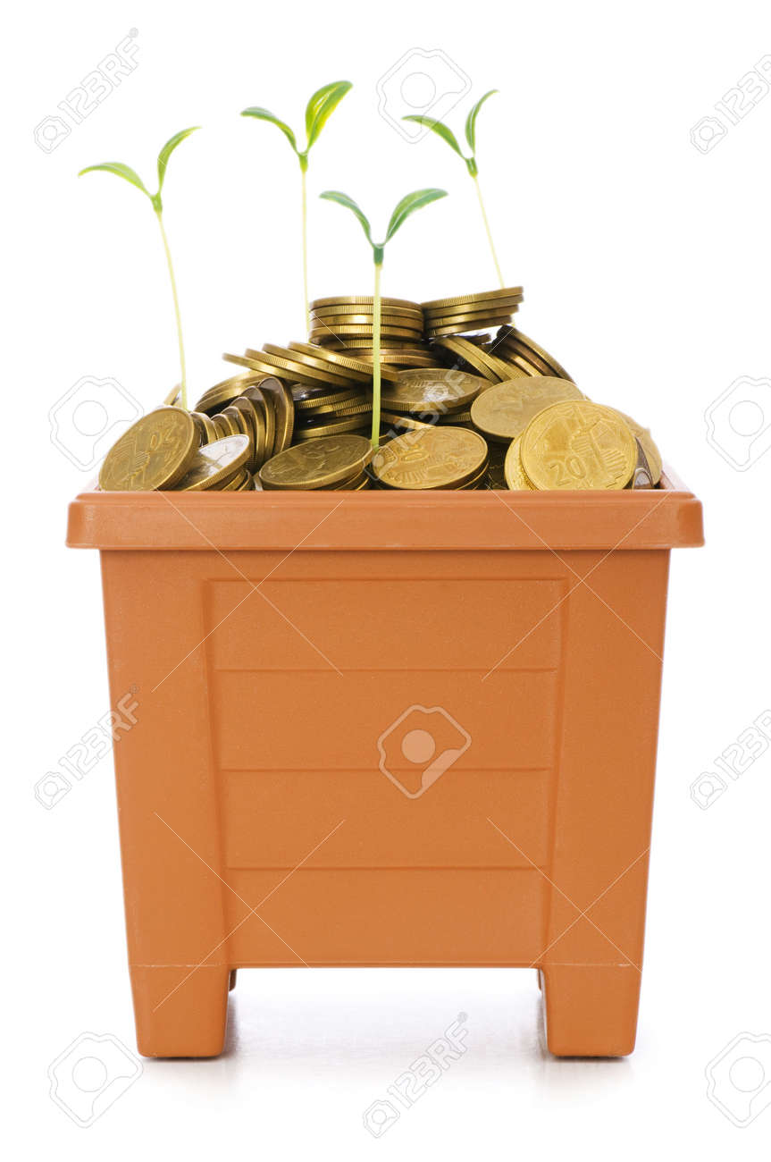 Green seedling growing from the pile of coins Stock Photo - 5561460