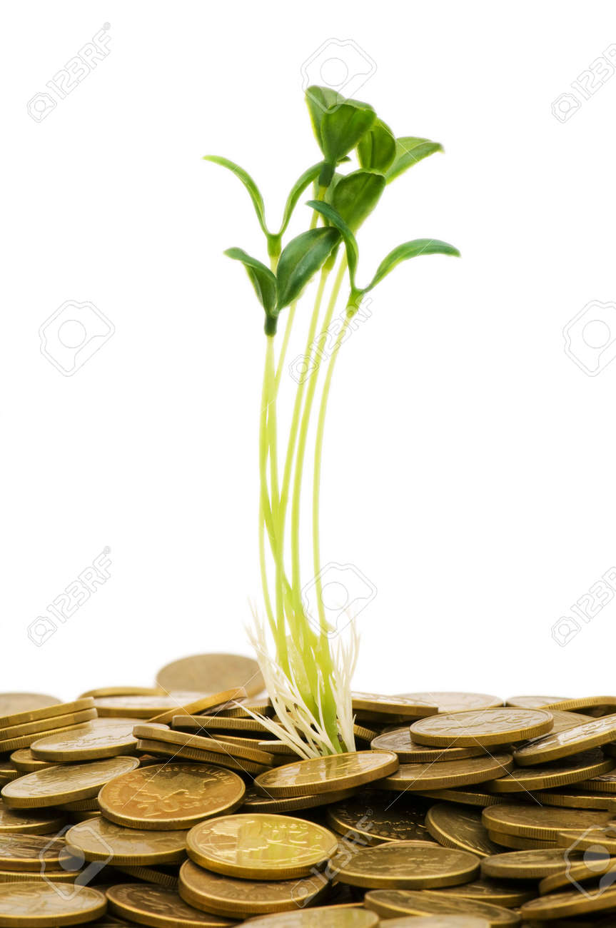 Green seedling growing from the pile of coins Stock Photo - 5718367