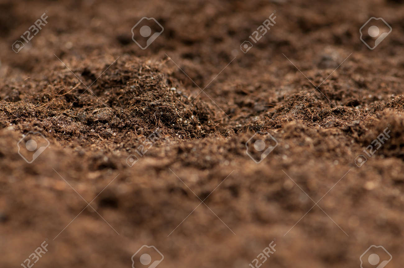 Close up of soil - can be used as background Stock Photo - 8740225