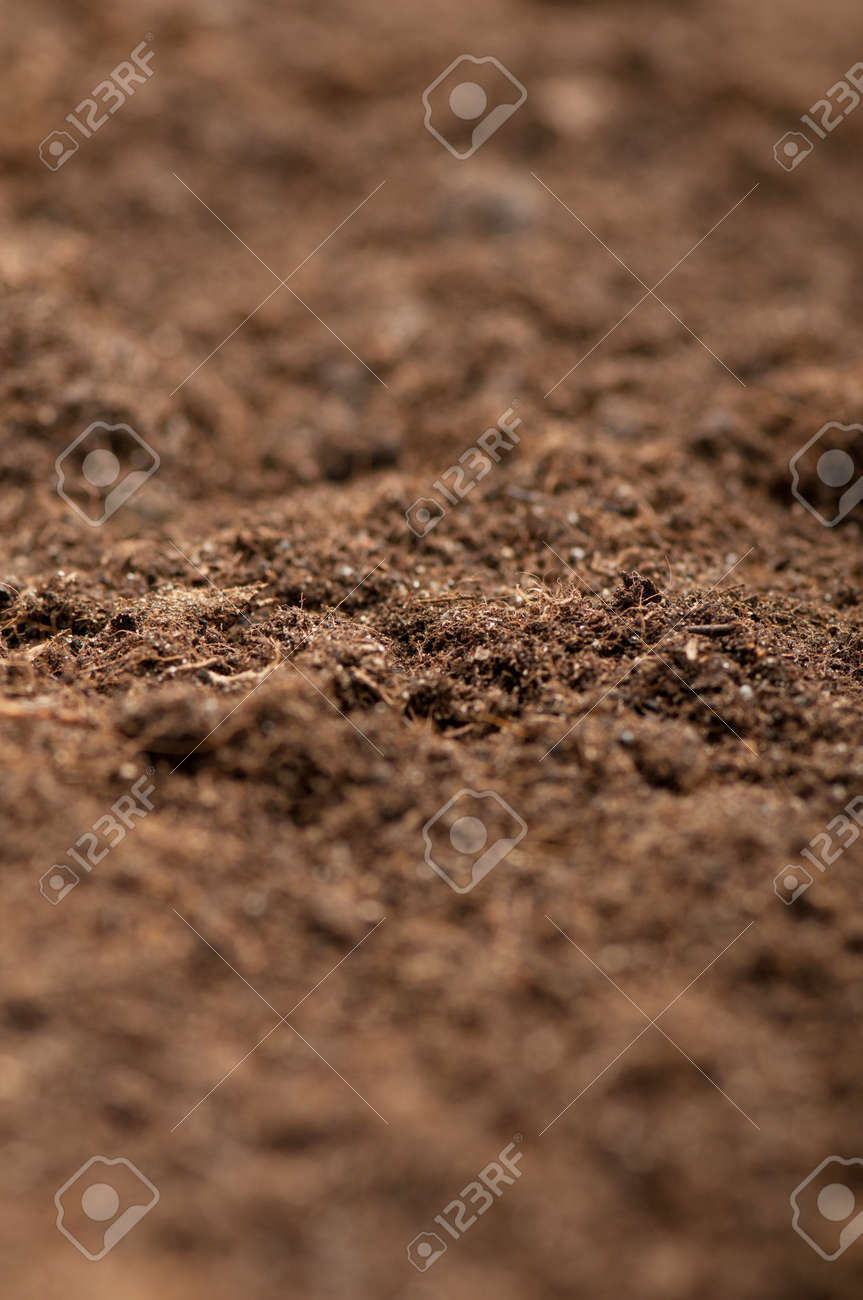 Close up of soil - can be used as background Stock Photo - 8943646