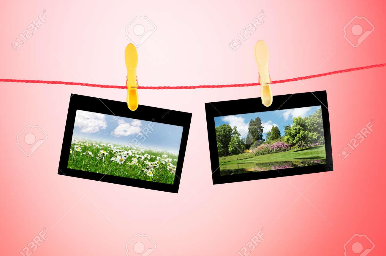 Marcos Para Cuadros Con Fotos De La Naturaleza Fotos, Retratos ...
