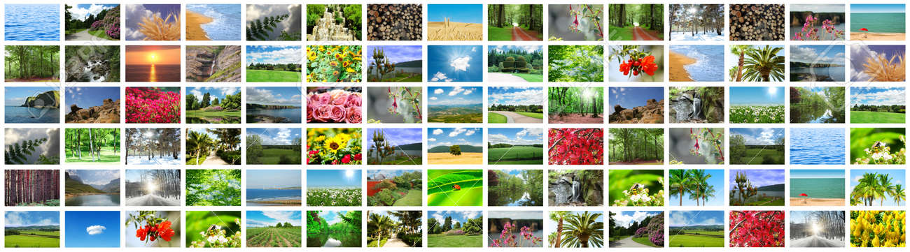 Collage of many nature photos Stock Photo - 12228530