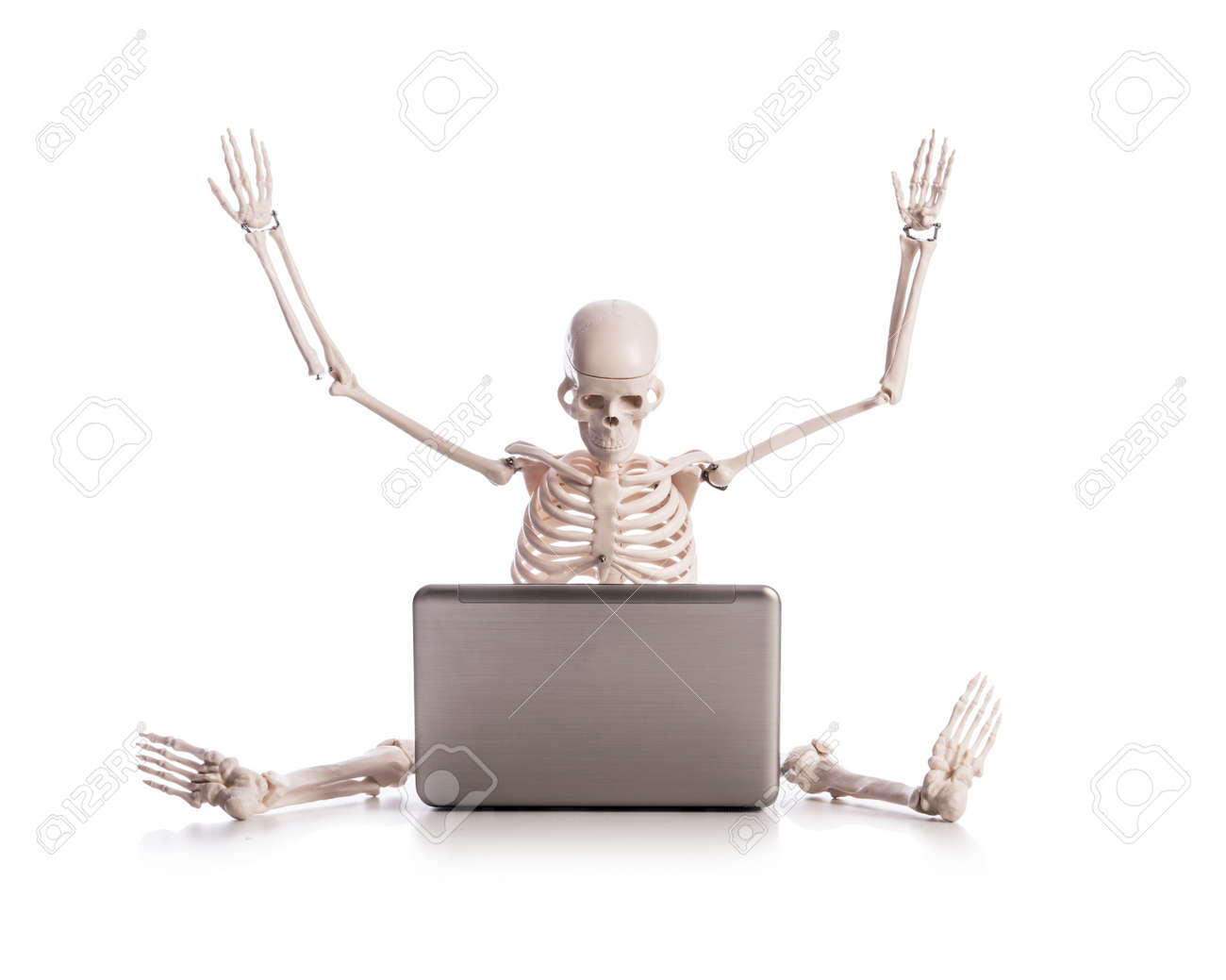 Skeleton working on laptop Stock Photo - 18301597