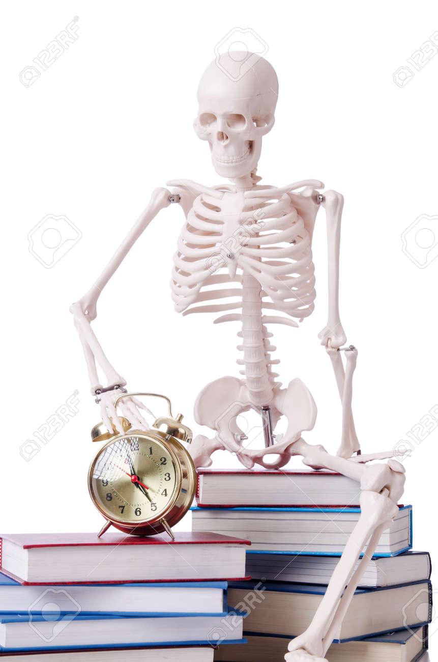 Skeleton reading books on white Stock Photo - 19008828