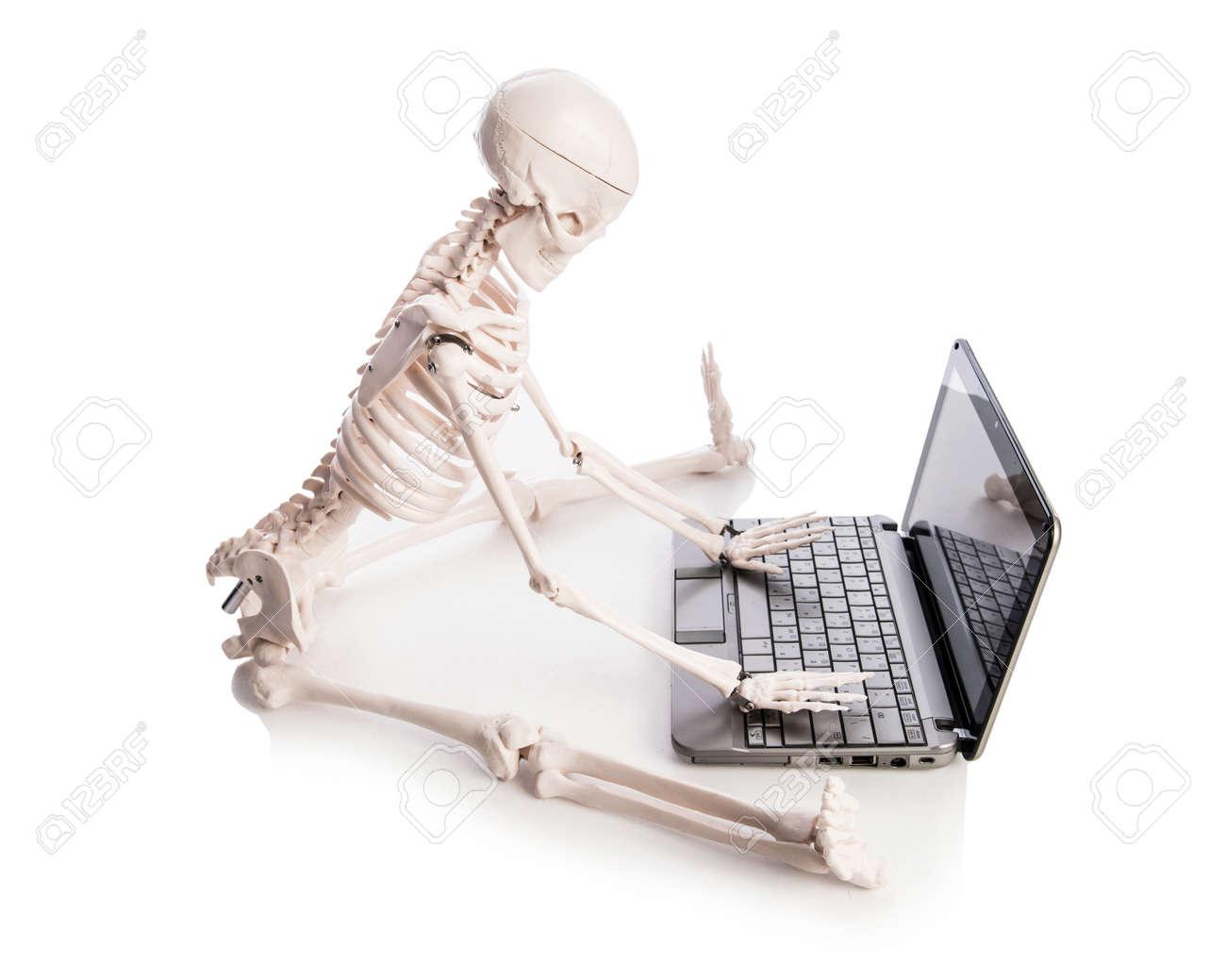 Skeleton working on laptop Stock Photo - 19038575