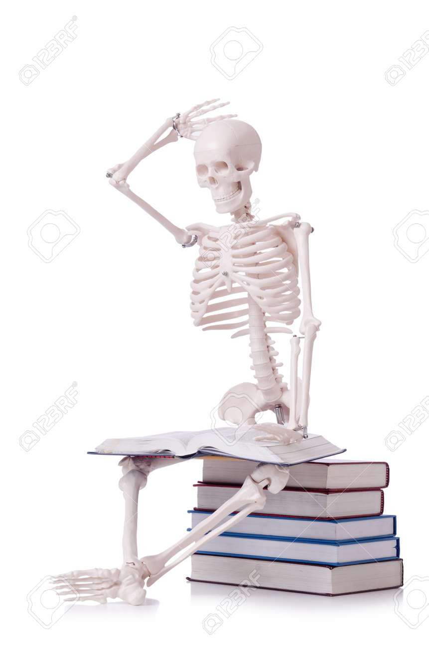 Skeleton reading books on white - 19036943