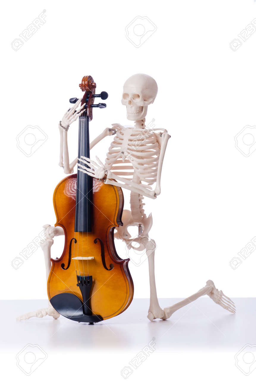 Skeleton playing violin isolated on the white Stock Photo - 19037100