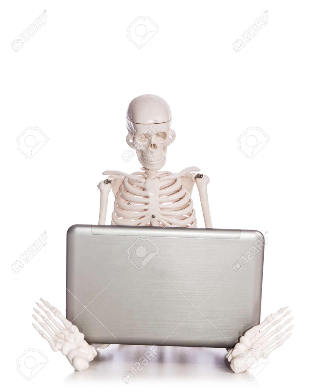 Skeleton working on laptop Stock Photo - 19433890