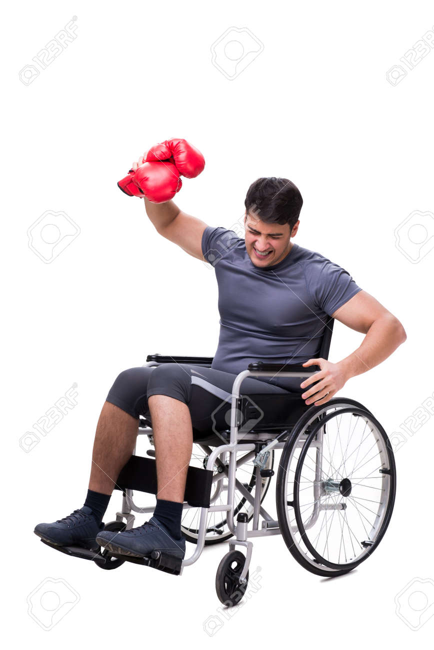 boxer recovering from injury on wheelchair stock photo picture and