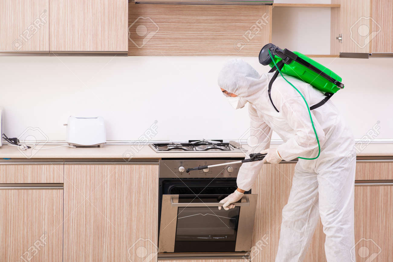 Professional contractor doing pest control at kitchen - 117281888