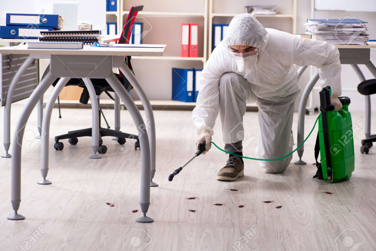 Professional contractor doing pest control at office - 118046122