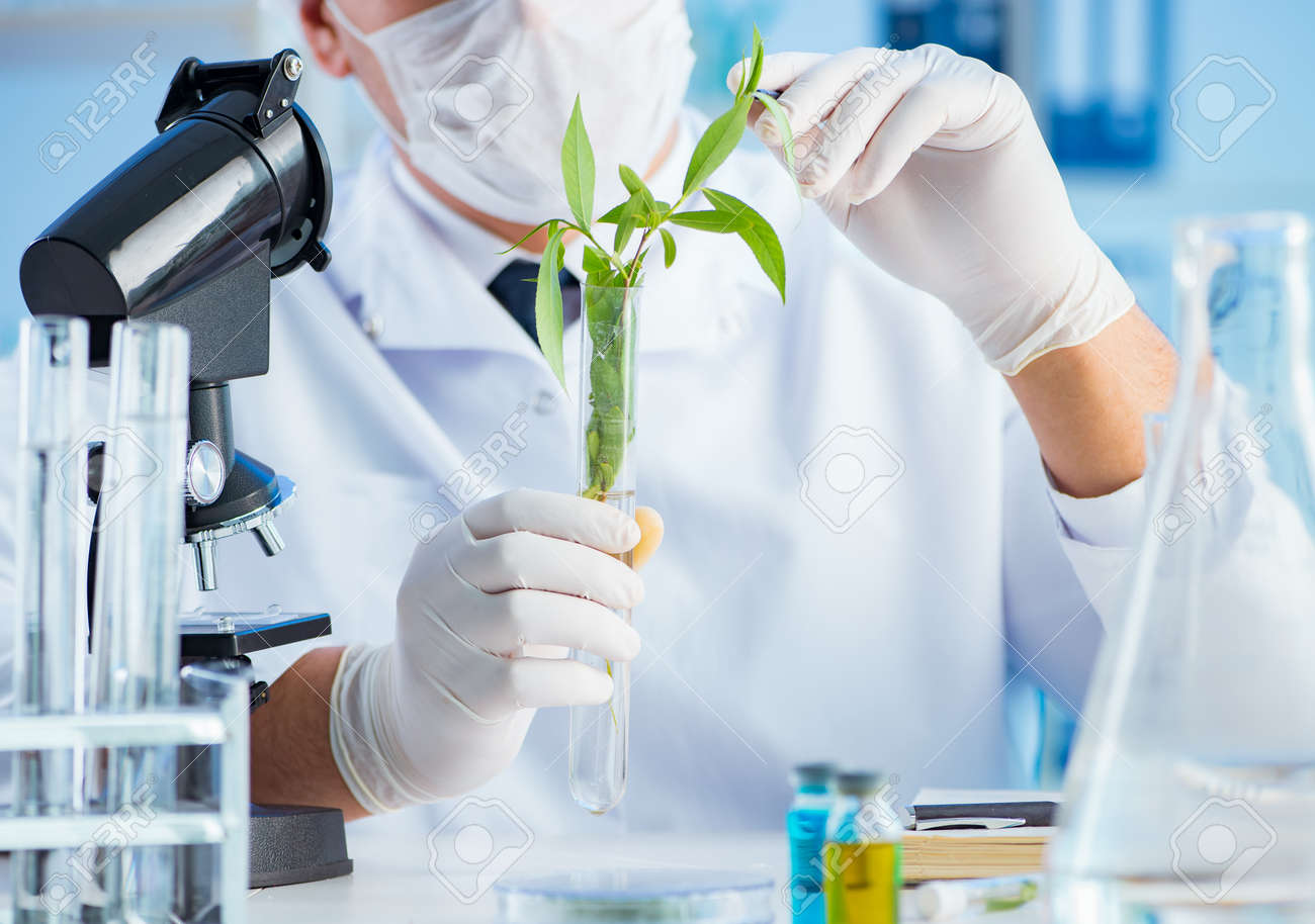 Biotechnology concept with scientist in lab - 130828029