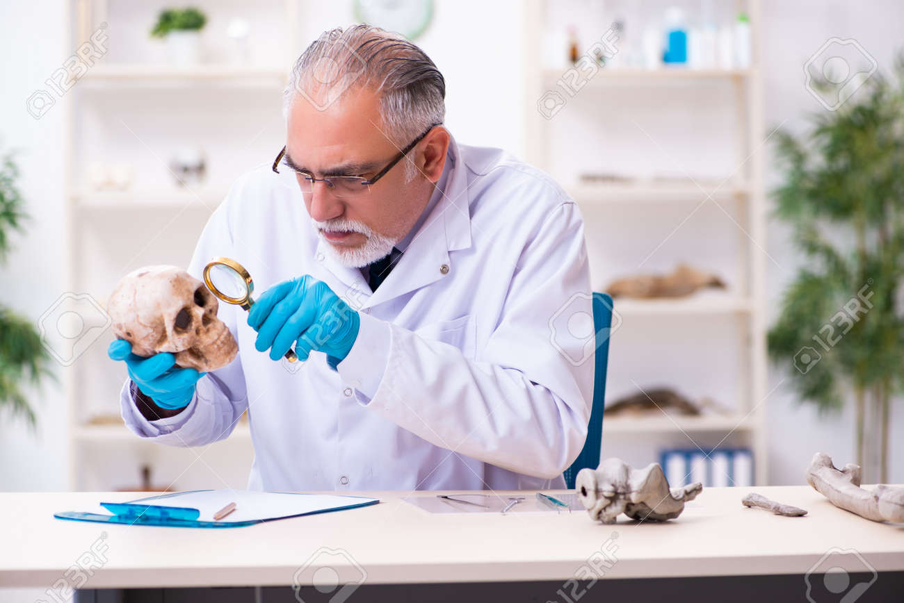 Old senior anthropologist working in the lab - 160470196