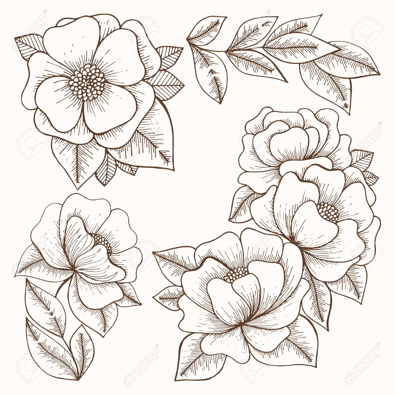 Flowers. Hand drawing. Vector set for design and decoration of..