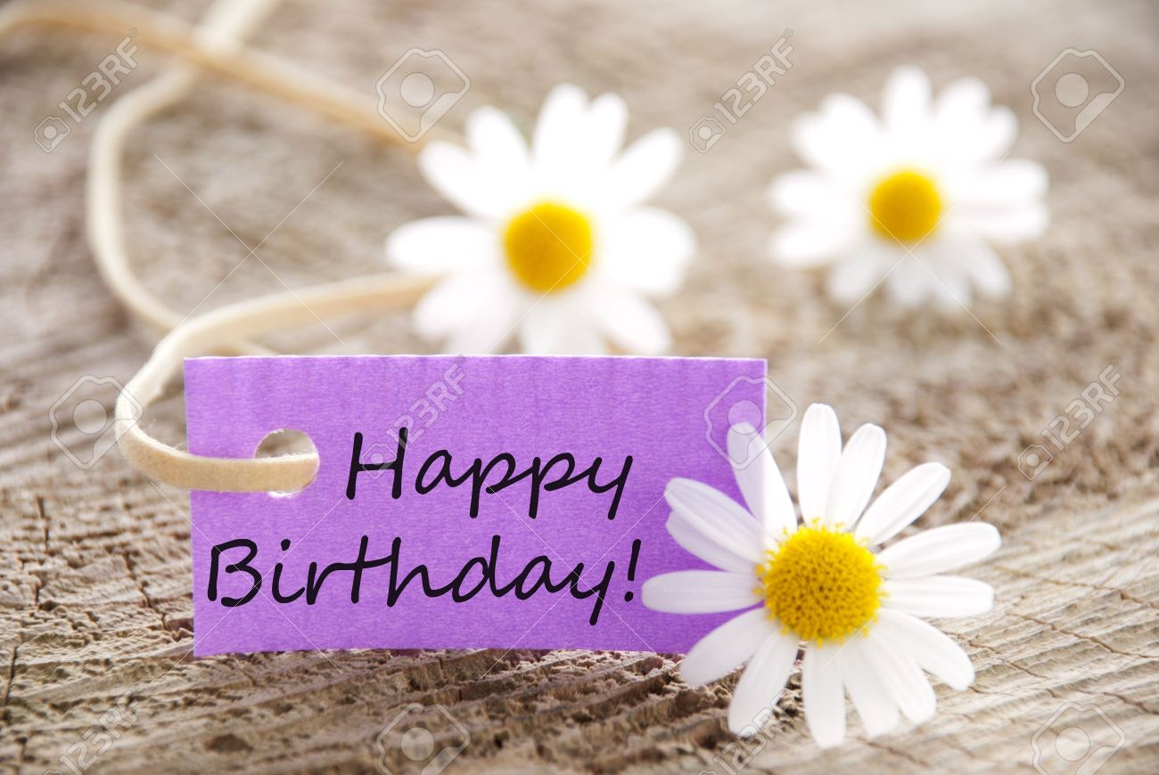 Birthday Flowers Stock Photos Royalty Free Birthday Flowers Images