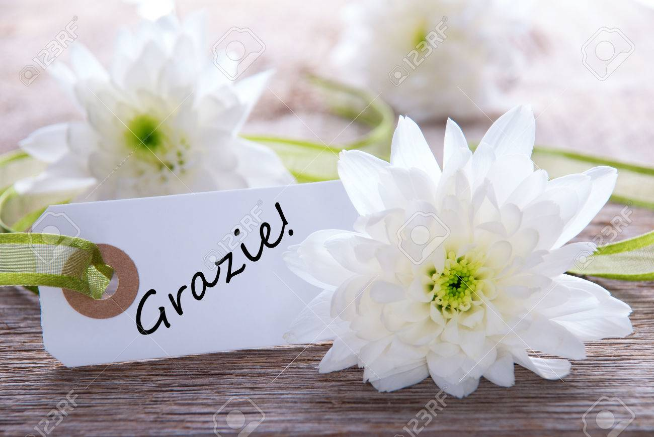 White label with the italian word gracias which means thanks stock stock photo white label with the italian word gracias which means thanks and white flowers mightylinksfo