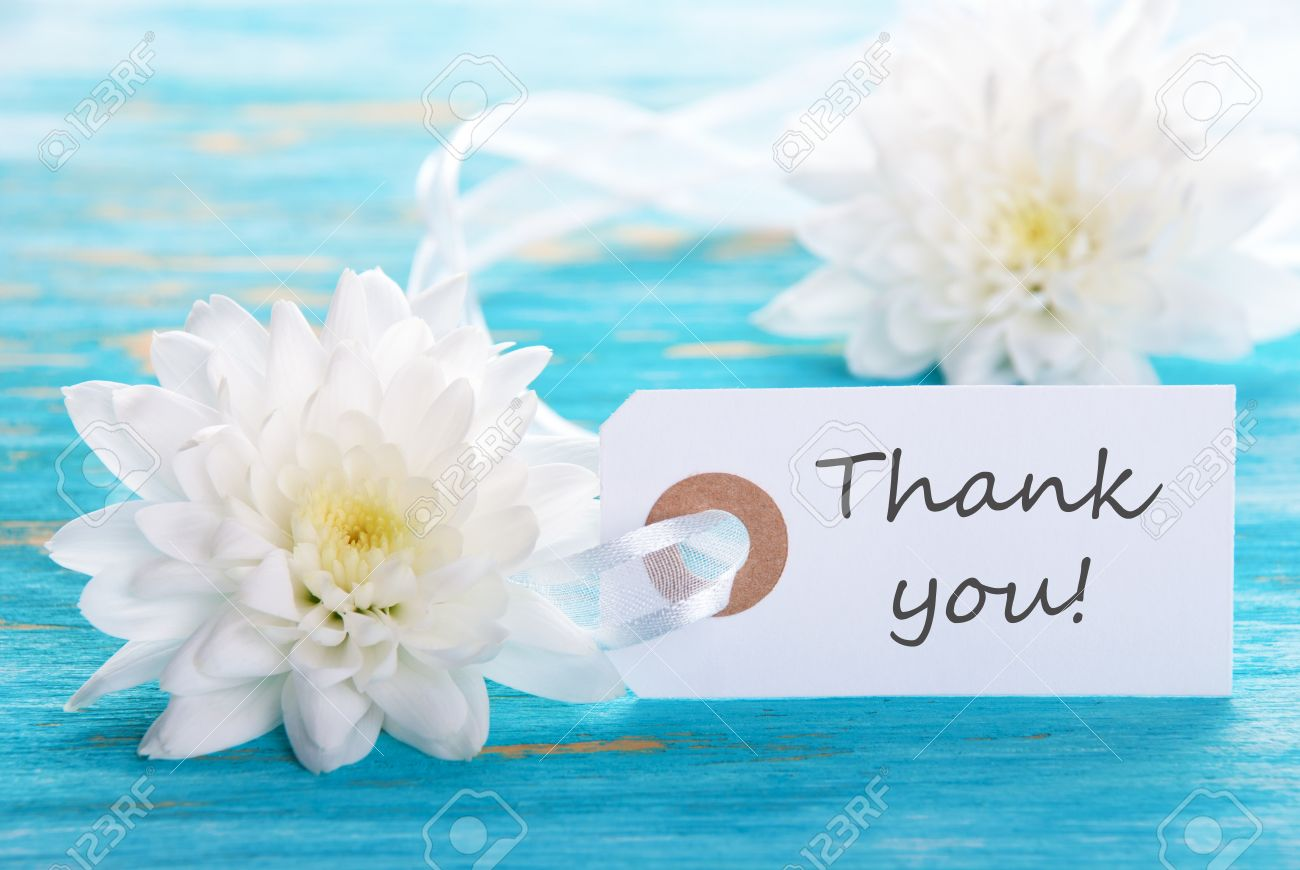 Turquoise Background With White Flowers And Thank You Label Stock