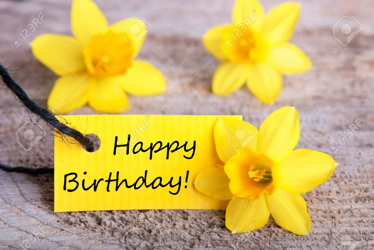 Feliz cumpleaños, Yinnethvil1293!!! 26786521-yellow-label-with-happy-birthday-and-daffodil-blossoms-in-the-background